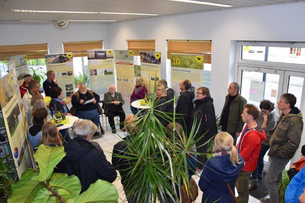 """""""Schmetterlinge & Co."""" – Grüne eröffnen Ausstellung zu Artenschutz"""