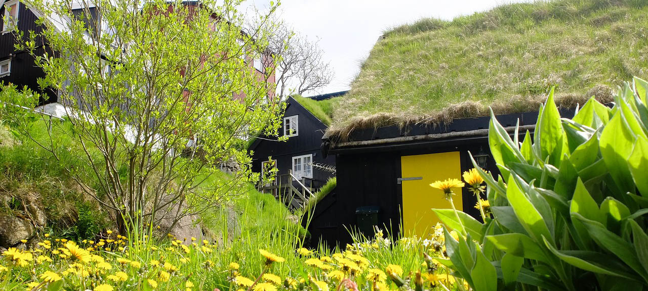 Klimaschutz beim Bauen:  Grün aufs Dach oder an die Fassade bringen